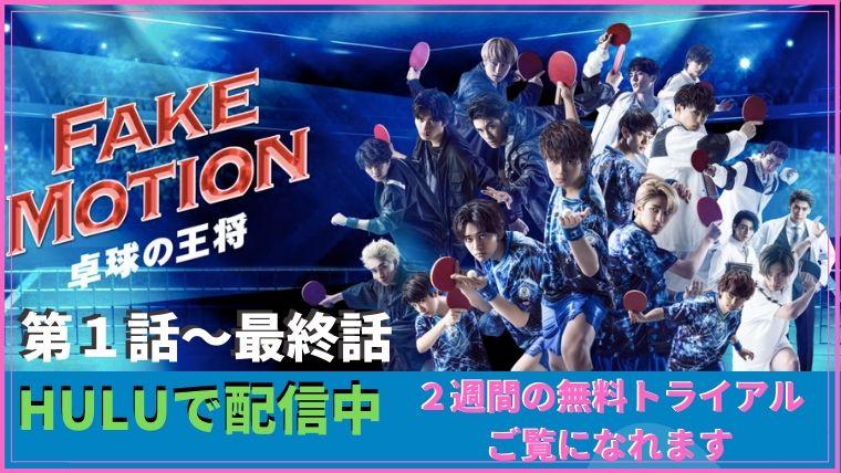 fakemotion_01wa_last