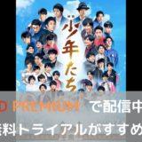 東西のジャニーズJr.が豪華共演、映画「少年たち」はFOD Premium で配信中です
