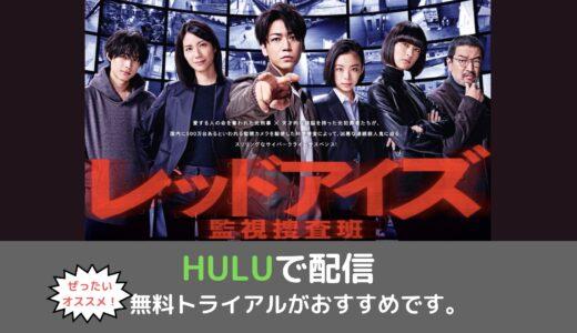 KAT-TUN・亀梨和也さん主演のドラマ「レッドアイズ 監視捜査班」